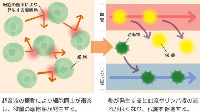 超音波美顔器の温熱効果の解図